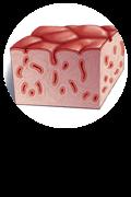 Celiac Disease Button